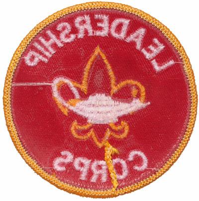 Boy Scout Insignia