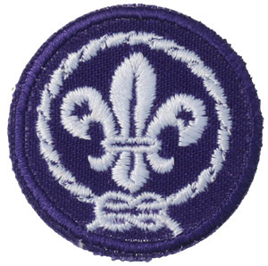 World Crest Patch - Small