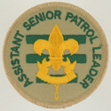 Assistant Senior Patrol Leader 1989 - 02