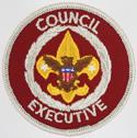 Council Executive 1973 - 89