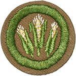 Corn Farming 1942 - 46
