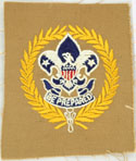 Deputy Scout Commissioner 1920 - 36