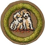 Dog Care 1942 - 46