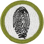 Fingerprinting 2010 - 13