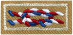 Eagle Award Knot 2013 - Current