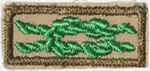 Scouter's Training Award Knot