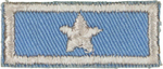 National President's Award 1 Star