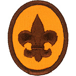 Scout 1976 - 89