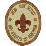 Scout 2010 Anniversary