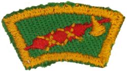 Senior Scout Title Citizen 1945 - 49