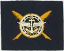 Senior Scout Secretary