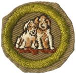 Dog Care 1938 - 40