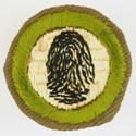 Fingerprinting 1938 - 40