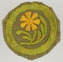 Botany 1941 - 46