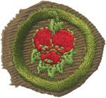 Fruit Culture 1939 - 41