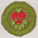 Fruit Culture 1941