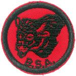 Buffalo 1960 - 69
