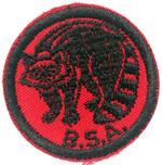 Raccoon 1960 - 69