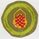 Basketry 1942 - 46