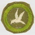Bird Study 1942 - 46