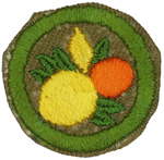 Citrus Fruit Culture 1942 - 46