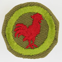 Poultry Keeping 1942 - 46