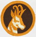 Antelope 1972 - 89