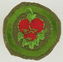 Fruit Culture 1947 - 60
