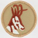 Antelope 1989 - 02