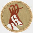 Antelope 2002 - 10