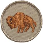 Bison 2002 - 10