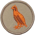 Bobwhite 2002 - 10