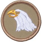 Eagle 2010 - 14