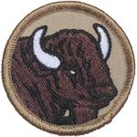 Bison 2014 - Current