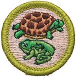 Reptile & Amphibian Study 2002 - Current